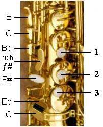 Right Hand Saxophone Keys