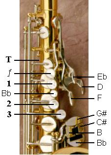Left Hand Saxophone Keys